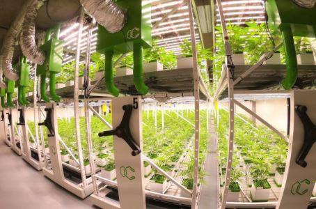 Vertical farming growing racks blog