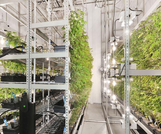 Portafab-modular-cultivation-room