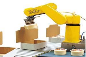 Fanuc robot food packaging