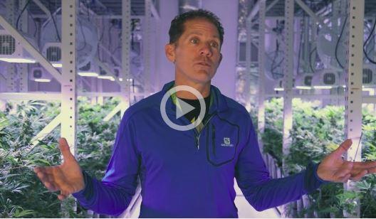 Montel grow rack video